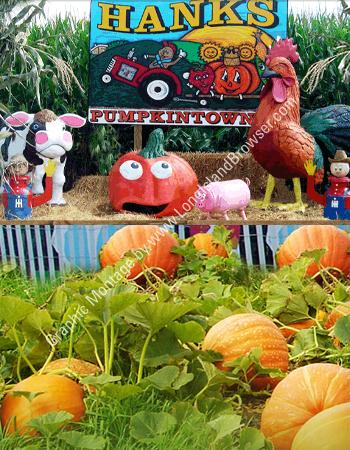 Hank's Pumpkintown Fall Season