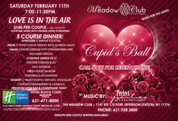 Cupid 39 s ball valentine 39 s day 2017 dinner dance celebration for Long island dulux valentine
