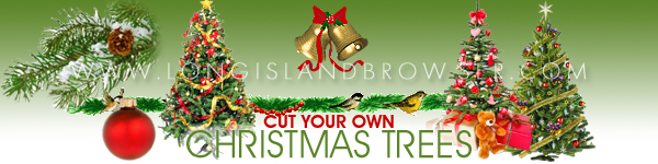 Cut Your Own Christmas Holiday Tree Farms on Long Island New York
