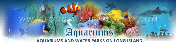 Aquariums and Water Parks on Long Island, New York