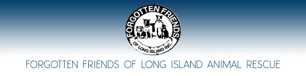 Forgotten Friends of Long Island Animal Rescue Group -  Long Island, New York