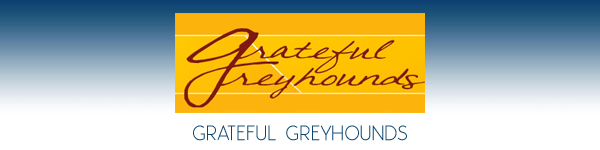 Grateful Greyhounds - Long Island, New York