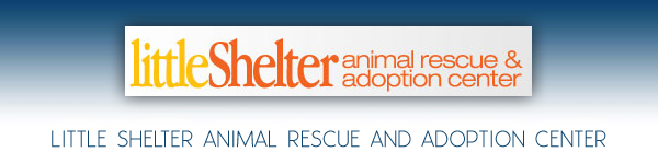 Little Shelter Animal Rescue and Adoption Center - Huntington, Long Island, New York