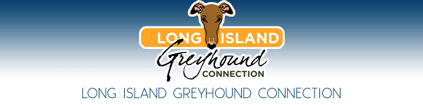Long Island Greyhound Connection