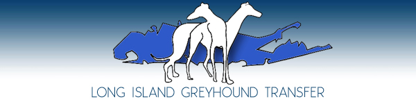 Long Island Greyhound Transfer (LIGHT) - Long Island, New York