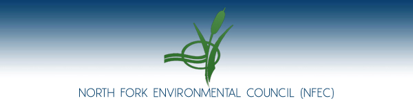 North Fork Environmental Council (NFEC) - Mattituck, Long Island, New York