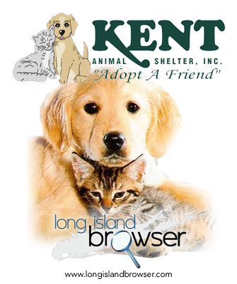 Kent Animal Shelter and Adoption - Calverton, Long Island, New York
