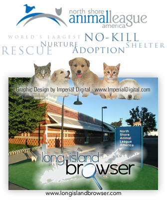 Kill Animal Shelters In Long Island Ny