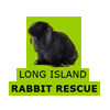 Long Island Rabbit Rescue Group (LIRRG) - Long Island, New York