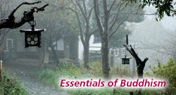 The Essentials of Buddhism